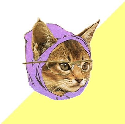 hipster_kitty